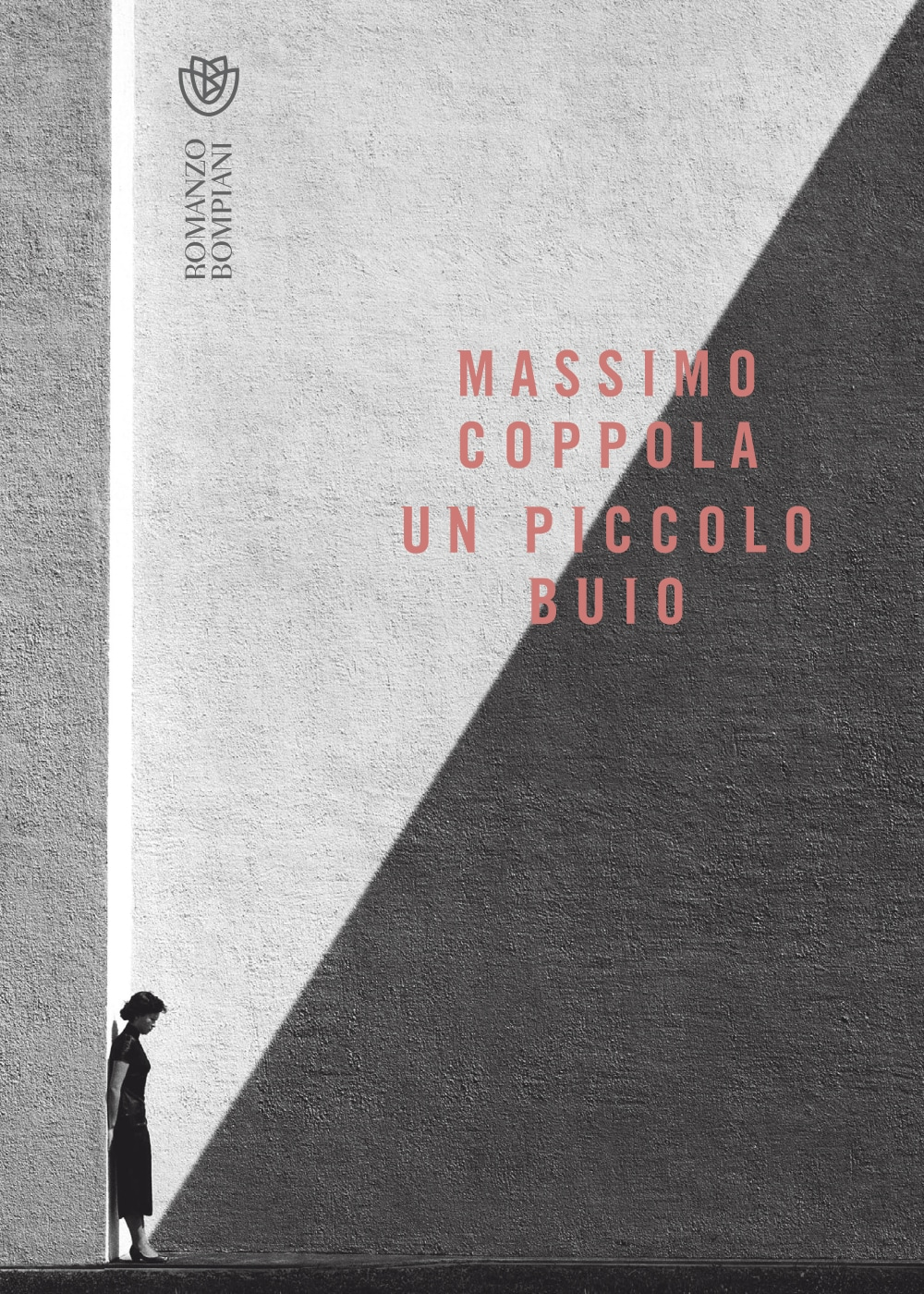 Un piccolo buio Book Cover